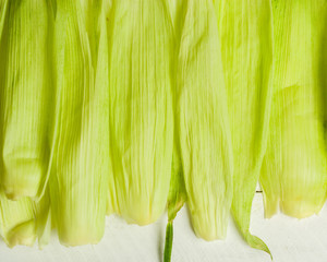 Light green leaves of corn on a white wooden background.