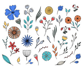 Hand drawn flowers collection.