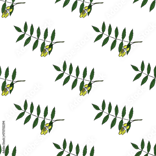 Neem In Color Seamless 1 Stock Image And Royalty Free Vector Files