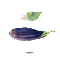 Handpainted watercolor poster with eggplant aubergine
