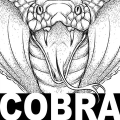 Hand draw cobra portrait. It may be used for design of bag, postcard and poster. Vector illustration