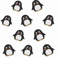cute penguin white  background