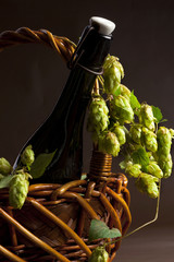 retro bottles of hops and beer_1