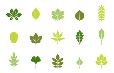Blätter Herbst & Frühling - Frühlingsfarben