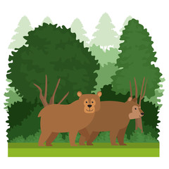 Forest animals cartoon over white background vector illustration graphic design