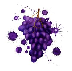 dark grape with paint blots