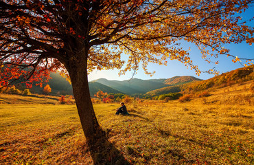midle aged woman sitting under colorful tree in autumn