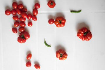 Pomodori su sfondo bianco