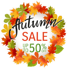 Autumn hand drawn lettering. Autumn leaves background. Vector illustration EPS10