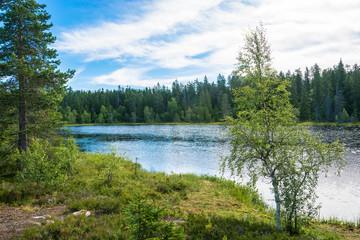 Beautiful landscape with a small lake.