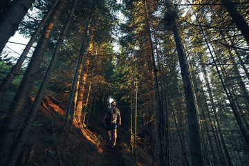Hiking adventures of alone man photographer in evening forest