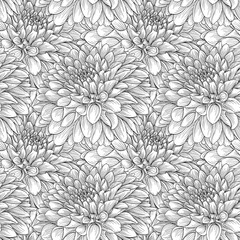 beautiful monochrome seamless background black and white dahlias Hand-drawn. Design for greeting cards and invitations of wedding, birthday, Valentine s Day, mother s day and other seasonal holiday