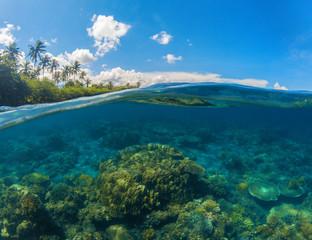 Seascape split photo. Double seaview. Underwater coral reef.