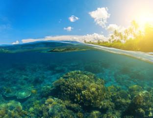 Double seaview. Underwater coral reef. Above and below waterline.