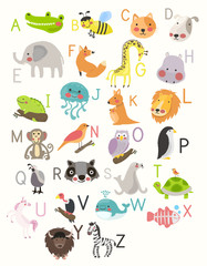 Illustration drawing style alphabet wildlife