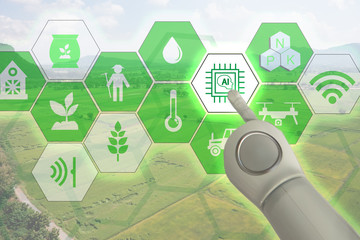 Wall Mural - Smart farming, industrial agriculture with artificial intelligence(ai) concept. Farmer use robot and augmented reality technology to research, control, monitor and management in the field,farm