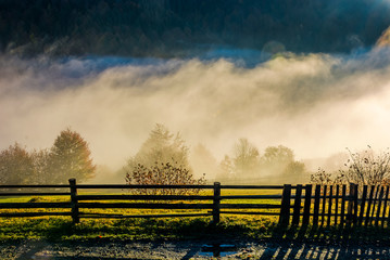 rural area on hillside in rising cloud at sunrise. gorgeous autumnal countryside scenery in foggy mountains