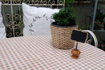 Small plant wicker plant pot with black label on plaid table sheet