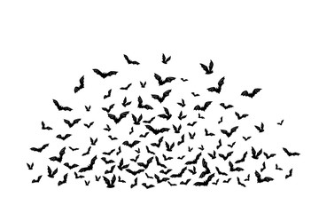 Halloween flying bats. Decoration element from scattered silhouettes