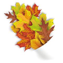 Convert Napkin Autumn Foliage
