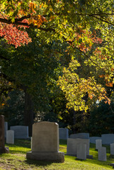 Wall Murals Cemetery Colorful changing leaves above tombs at Arlington National Cemetery near to Washington DC, in Autumn
