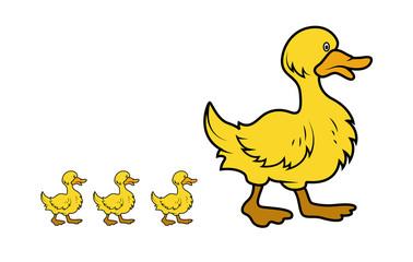 Cartoon Duck Birds