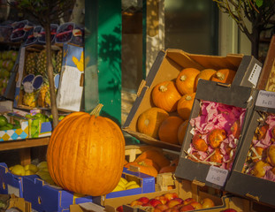 Pumpkins and Fruit for Sale Outside Grocer
