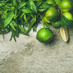 Flatlay of freshly picked organic limes and mint leaves for making cocktail or lemonade over grey concrete stone background, top view, copy space, square crop