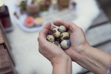Cropped image of female farmer holding quail eggs