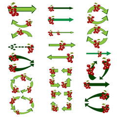 Green arrows with berries. Set green  arrows. The original arrow-shaped elements green colors. Red currant. Vector illustration.