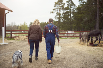 Rear view of mature couple walking in farm