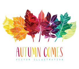 Hand drawn leaves composition. Autumn background. Vector illustration.