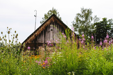 Scenic shot of the old barn buildings