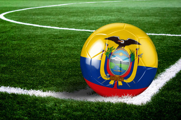 Ecuador Soccer Ball on Field at Night