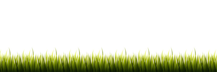 Green grass isolated on white background boader for web Vector Illustration