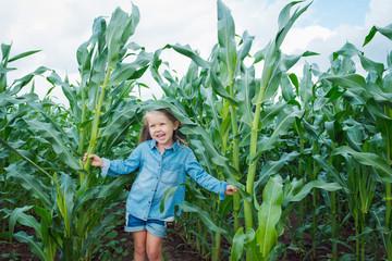happy funny baby girl in a corn field