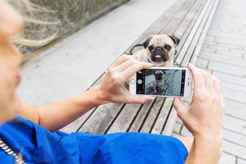 woman makes a photo of a pug