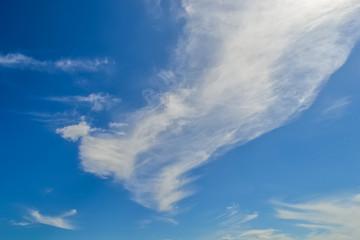 Beautiful Clear Blue Skies of Goan Summer