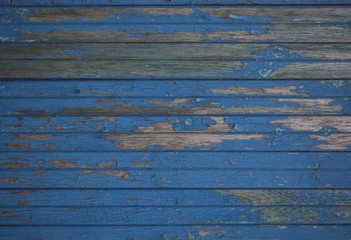 Old wooden surface with exfoliating paint dark blue colour 4