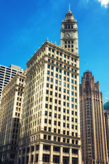 Fototapeta Wrigley Building and Tribune Tower