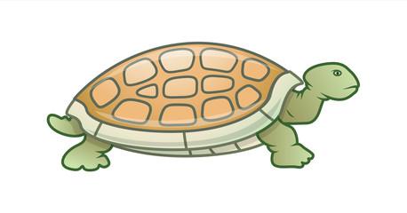 Cartoon Turtle - handmade clip-art vector
