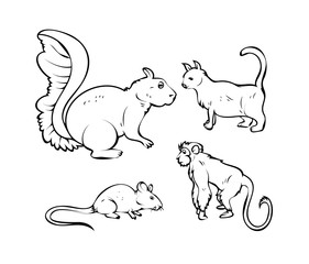 Cartoon Pet Animals Vector Drawings - handmade clip-art vector