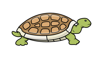 Cartoon Tortoise Vector Illustration