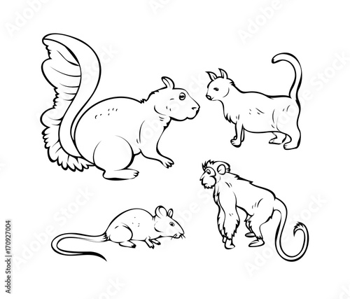 Cartoon Pet Animals Vector Drawings Handmade Clip Art Vector
