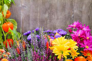 Garten -  Blumen und Holz
