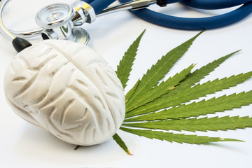 Cannabis, marijuana or weed and brain. Influence (positive and negative) of smoking marijuana on human brain, nervous system, mental activity and functions, cognitive functioning, development