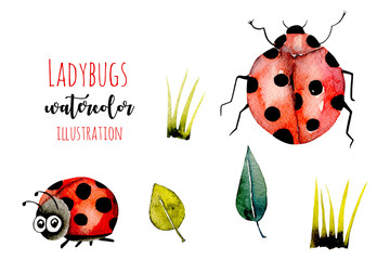 Set of watercolor cute cartoon ladybugs and simple plants illustrations, hand drawn isolated on a white background