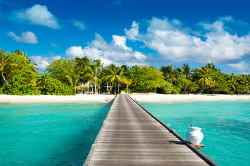 Garden Poster Tropical beach Wooden bridge to beautiful sandy beach under the shade of palms and tropical plants, Maldives