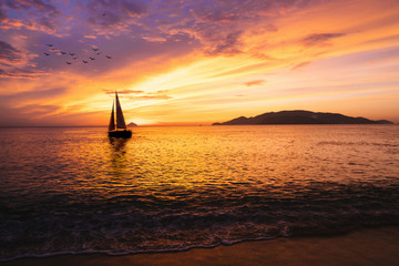 Sailboat on the ocean at sunrise Wall mural