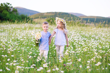 Beautiful little girl hugging a little boy in a field of chamomiles